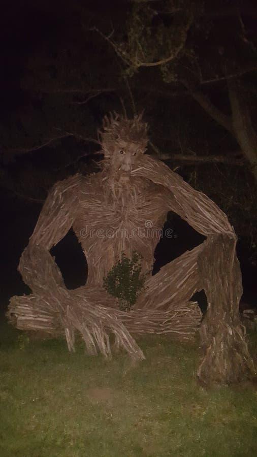Деревянный Адам стоковое фото rf