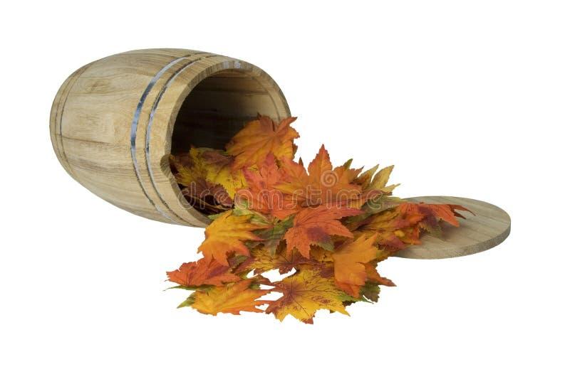 Деревянный бочонок на стороне с листьями падения стоковая фотография rf