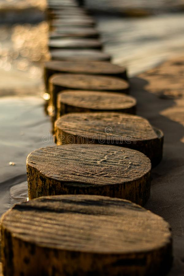 Деревянный волнорез в песке стоковое фото