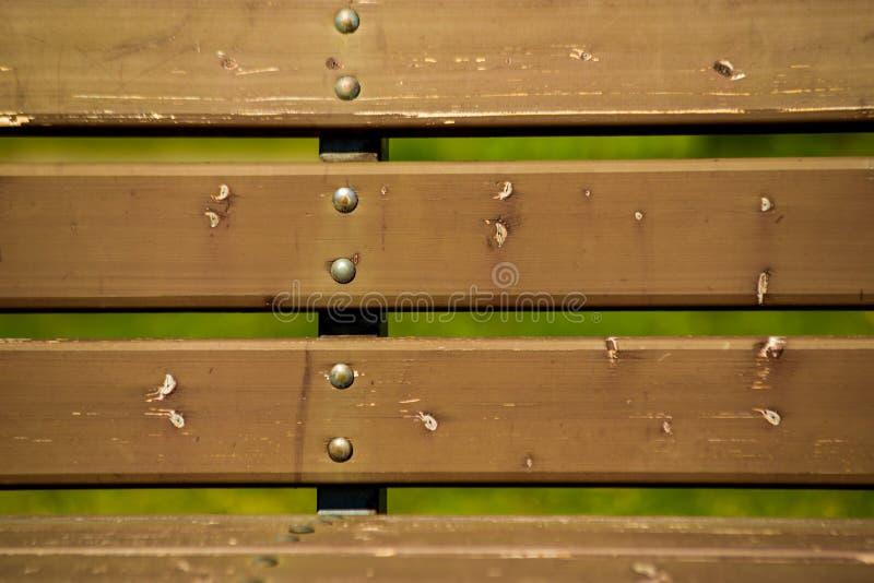 деревянный всход крупного плана текстуры стенда стоковое изображение