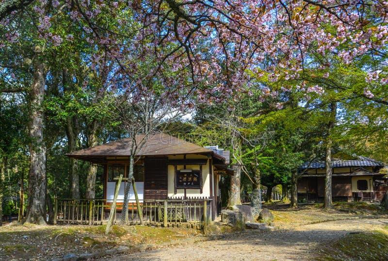 Деревянный дом в Киото, Японии стоковое изображение rf