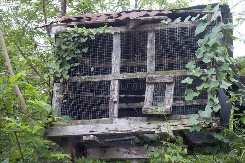 Деревянный дом птицы стоковое изображение