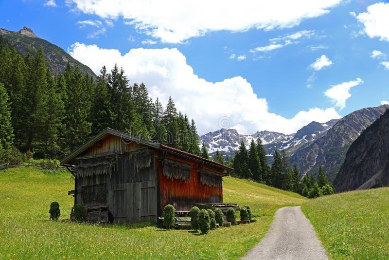 Деревянный дом с деревянными рамками для засыхания сена в горах Австрии стоковая фотография