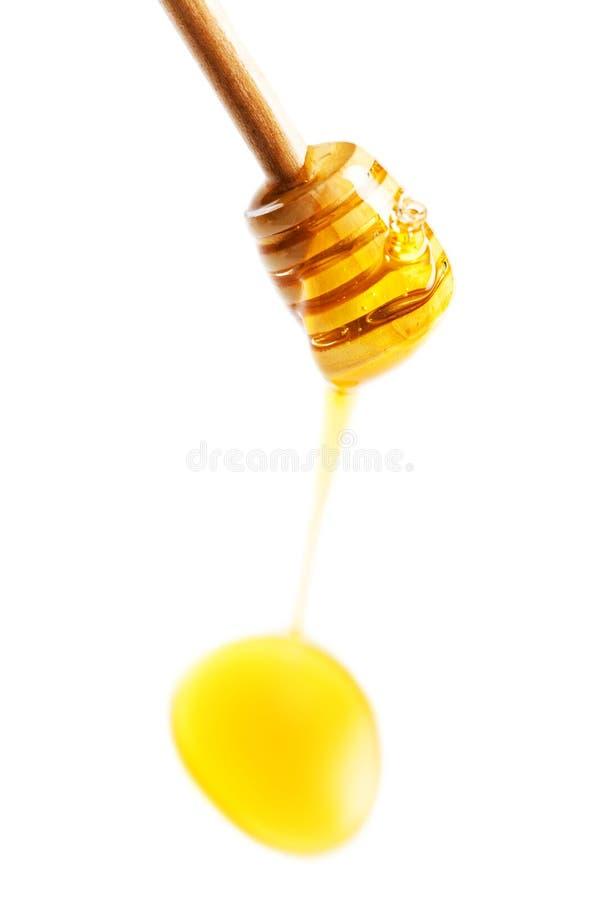 Деревянный ковш меда с желтыми падениями меда изолированный на белизне стоковое изображение