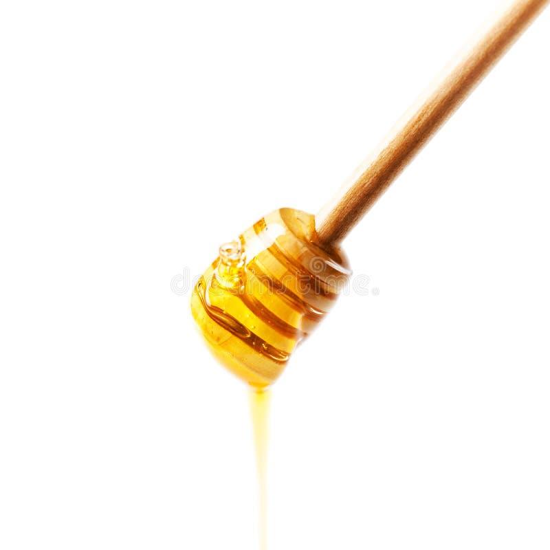 Деревянный ковш меда с падениями желтого меда пропуская изолированный дальше стоковые изображения