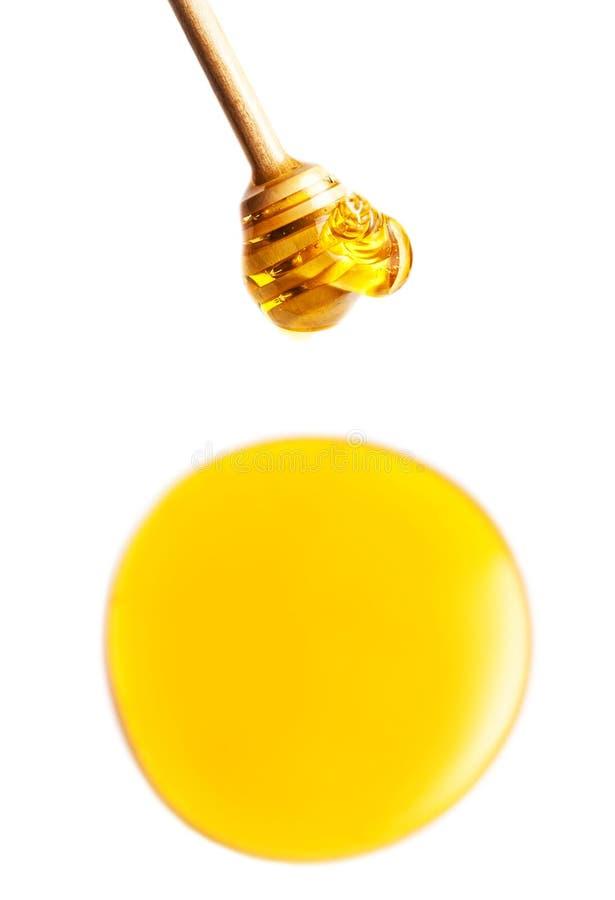 Деревянный ковш меда с падениями желтого меда пропуская стоковые фотографии rf