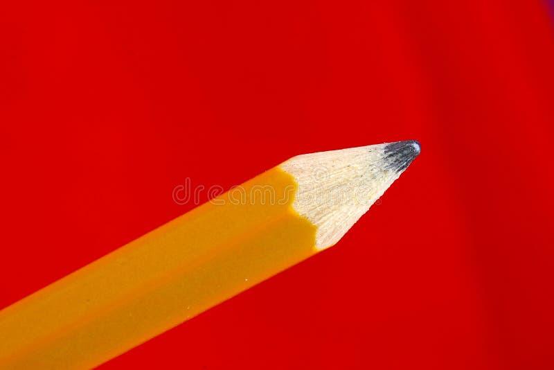 Деревянный крупный план подсказки карандаша стоковые фотографии rf
