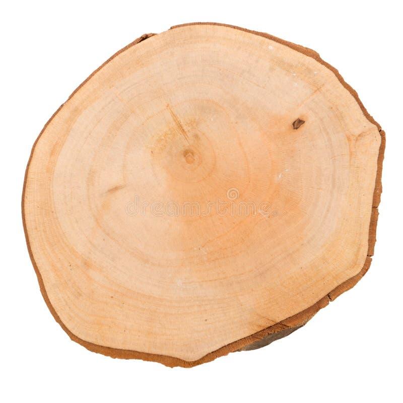 Деревянный кусок журнала стоковое фото