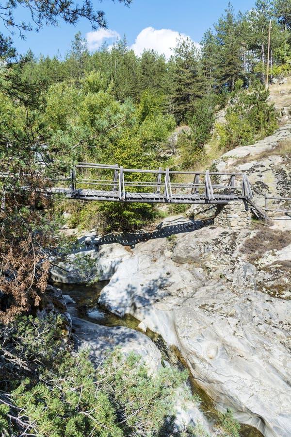 Деревянный мост в горе Болгарии Rhodope стоковое фото rf