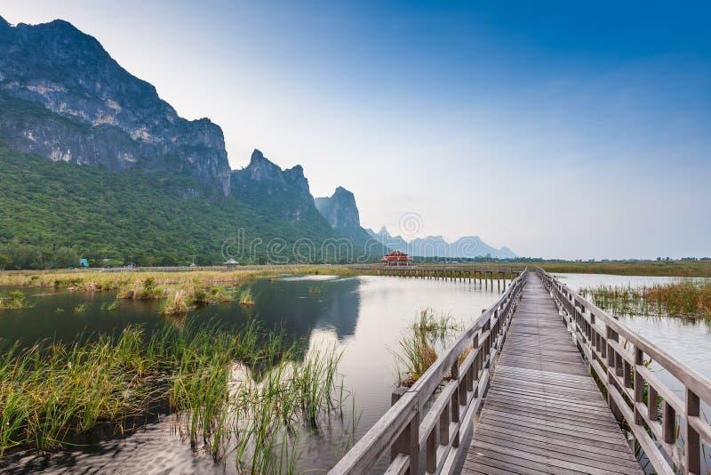 Деревянный мост в озере лотоса стоковые фотографии rf