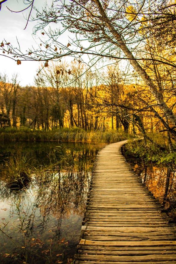 Деревянный мост в осени стоковые изображения rf