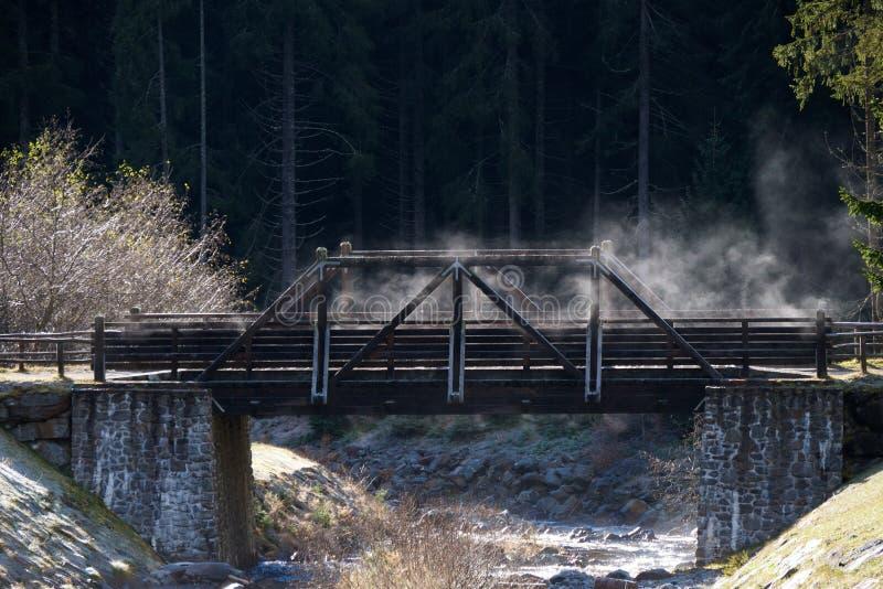 Деревянный мост в долине равина стоковые изображения
