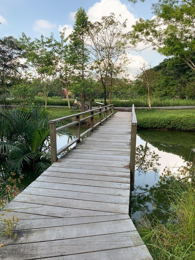 Деревянный мост в парке стоковые фотографии rf