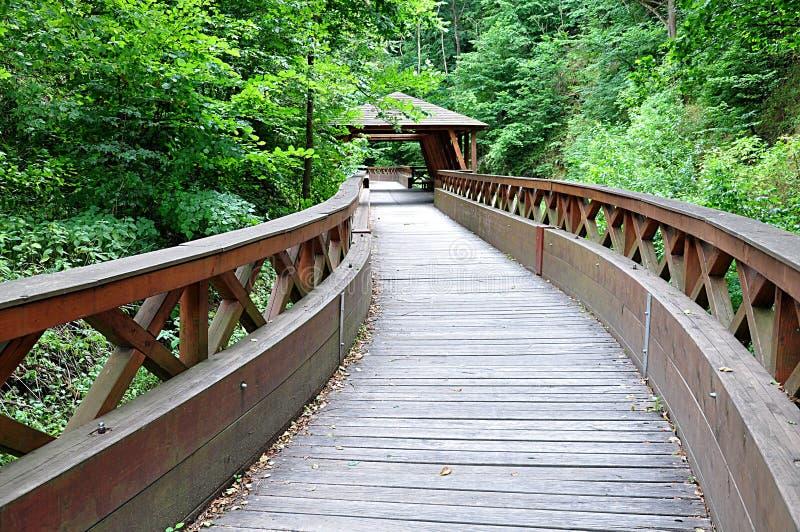 Деревянный мост в стране стоковые изображения rf