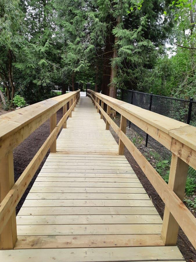 Деревянный мост дорожки стоковое фото