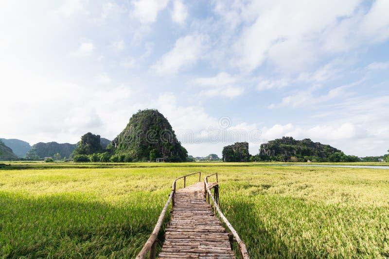 Деревянный мост идя через поле риса к горам парка Tam Coc в Ninh Binh, Вьетнаме стоковые фото