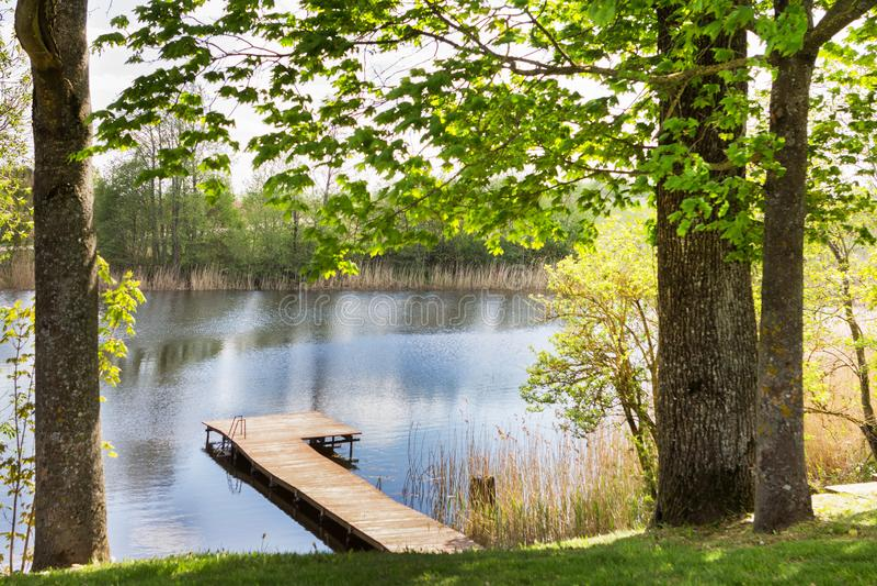 Деревянный мост к озеру в зеленом парке стоковое изображение