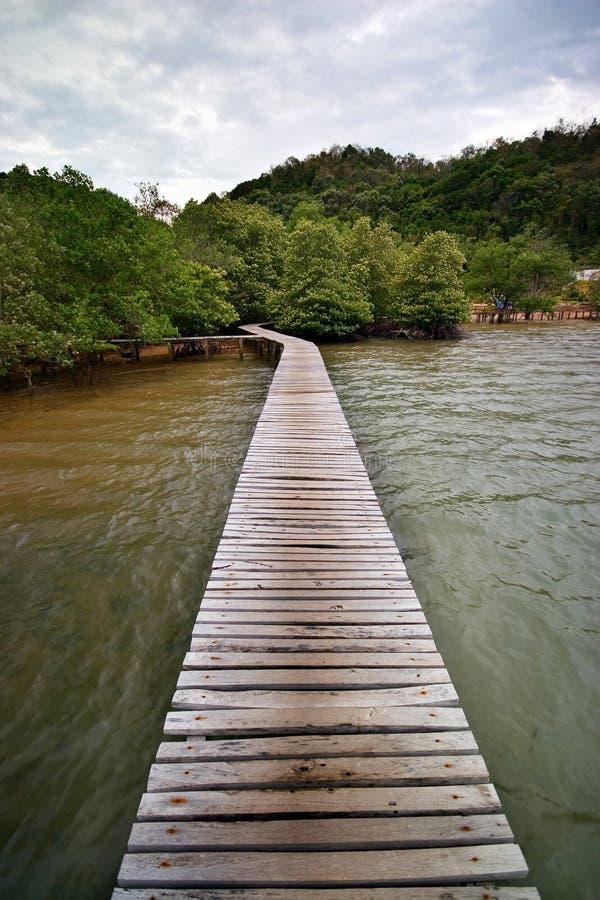 Деревянный мост к острову мангровы стоковые фотографии rf
