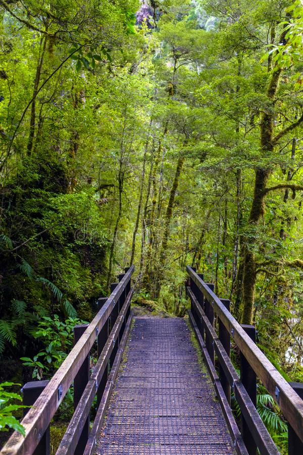 Деревянный мост над потоком стоковое фото rf