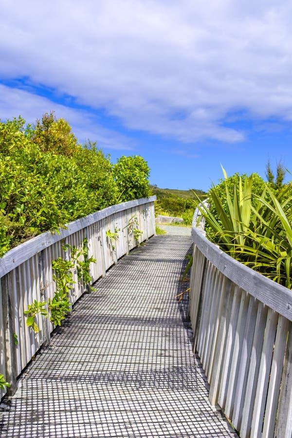 Деревянный мост над потоком стоковые фото