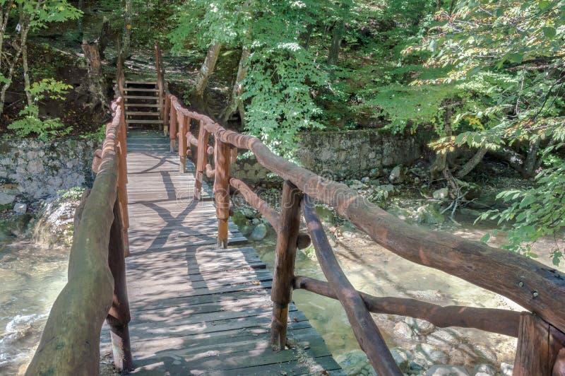 Деревянный мост над рекой стоковые изображения rf