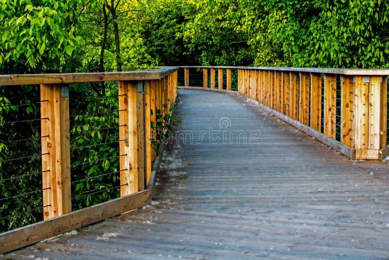 Деревянный мост на зеленой предпосылке стоковая фотография