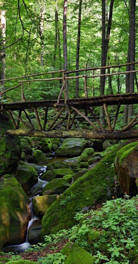 Деревянный мост над одичалым потоком стоковое изображение rf