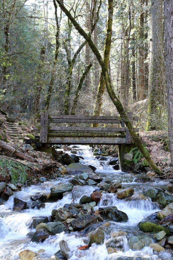 Деревянный мост пересекая поток горы стоковое фото