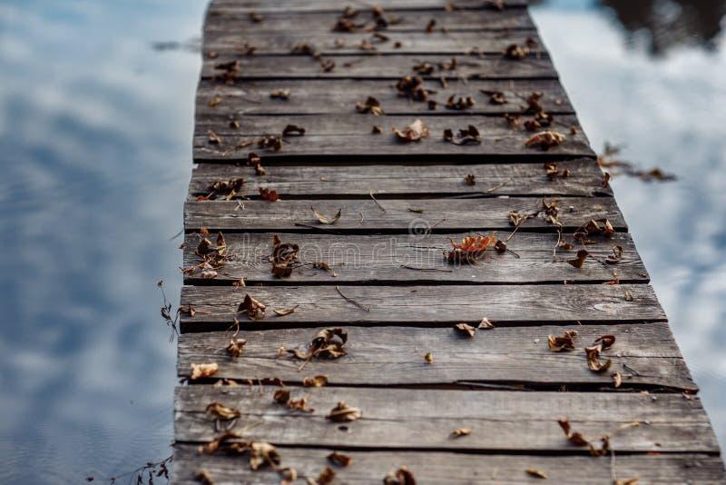 Деревянный мост покрыт с листьями осени Кленовые листы осени на деревянном столе Падать выходит естественная предпосылка стоковое фото rf