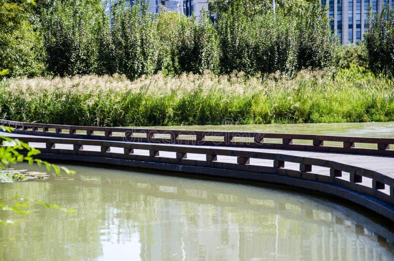 Деревянный мост стоковая фотография