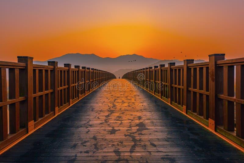 Деревянный мост Sunrise в Санчхон Бэй Корея стоковые изображения rf