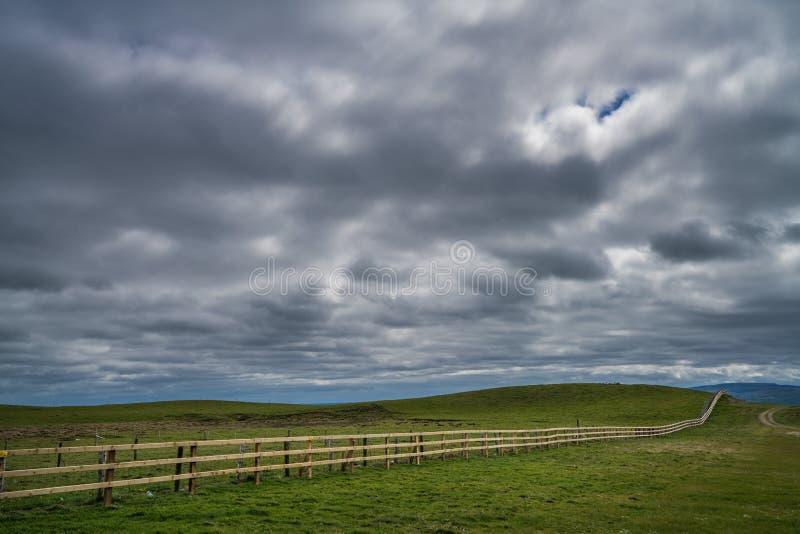 Деревянный обнести Ирландия стоковое фото