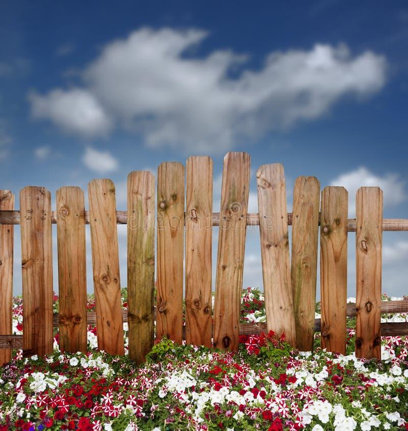 Деревянный обнести цветки стоковые изображения