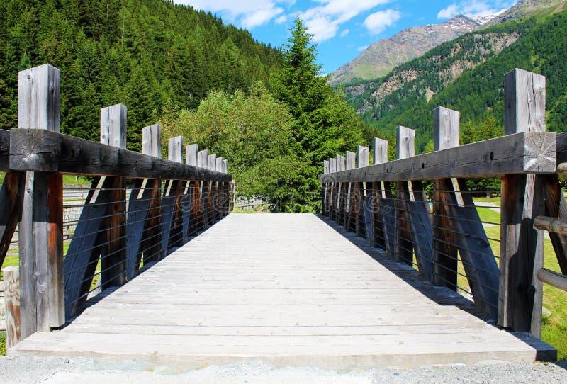 Деревянный пешеходный мост в лесе увиденном в прифронтовой перспективе стоковая фотография