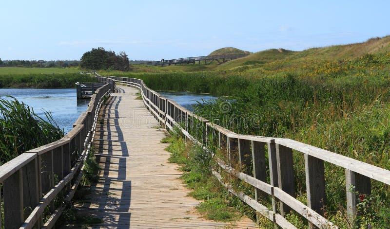 Деревянный пешеходный мост стоковое изображение rf