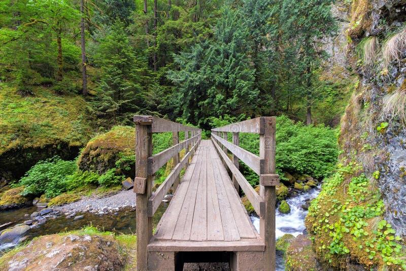 Деревянный пешеходный мост над заводью стоковая фотография rf