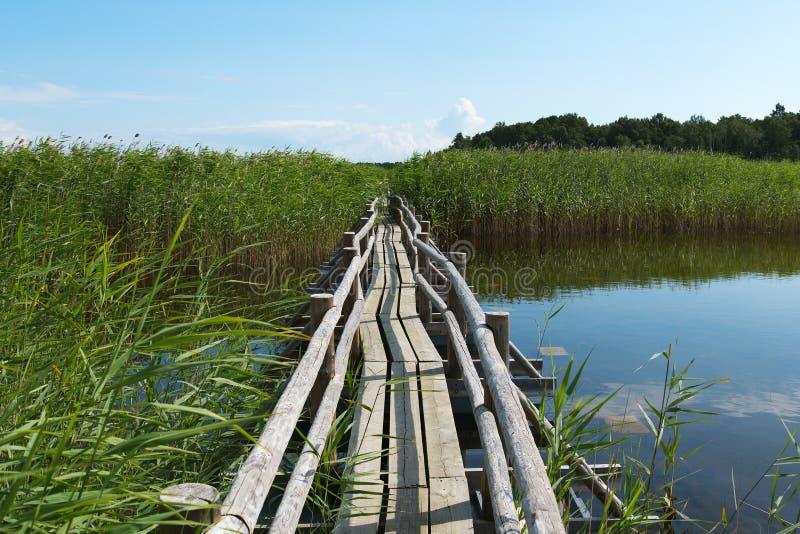 Деревянный пешеходный мост стоковое фото