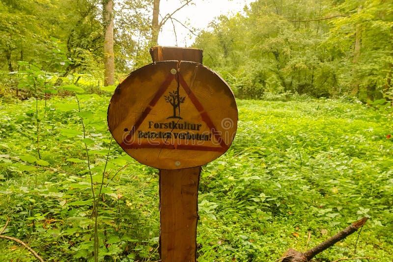 Деревянный подпишите внутри лес, заповедник стоковые фото