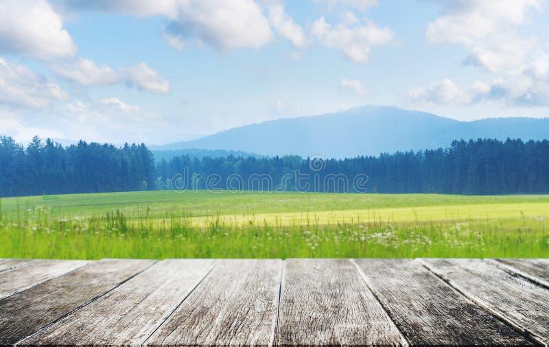 Деревянный пол с Медоу с лесом, горой, голубым небом и белыми облаками летом стоковое фото rf