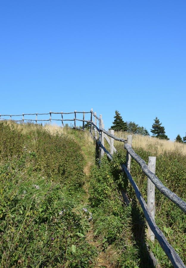 Деревянный поручень вдоль unmaintained пешего пути стоковая фотография rf