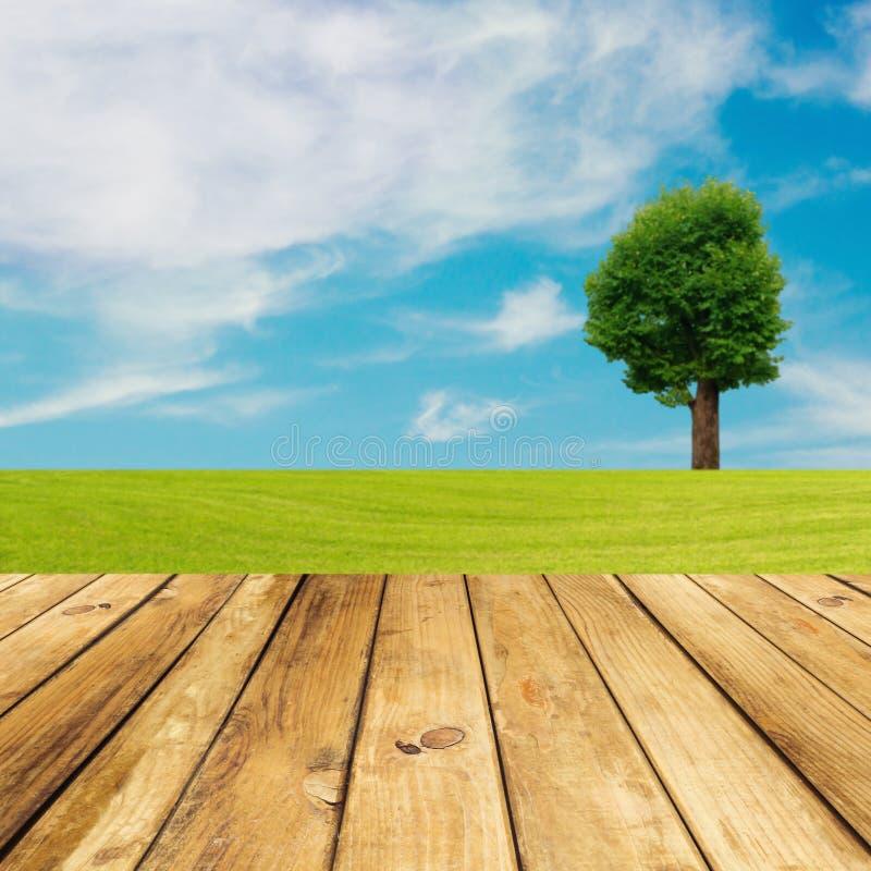 Деревянный пол палубы над зеленым лужком с деревом и голубым небом стоковые фотографии rf