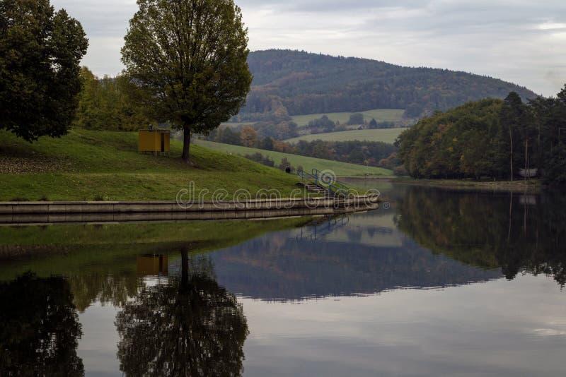 Деревянный сарай под деревом на береге озера стоковые фотографии rf