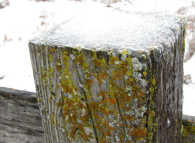 Деревянный столб загородки с льдом стоковая фотография
