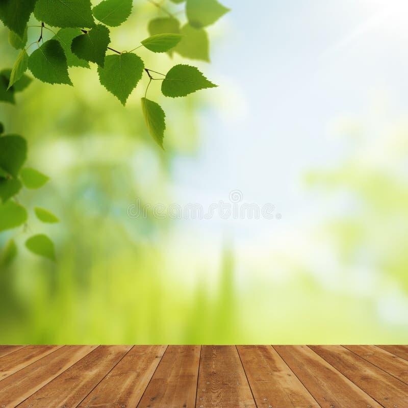 Деревянный стол против предпосылок красоты естественных стоковые фотографии rf
