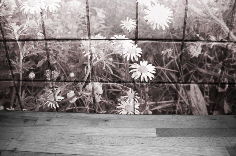 Деревянный счетчик кухни перед плитками кухни с одуванчиками и маргаритками Тонизированный Sepia стоковое изображение rf