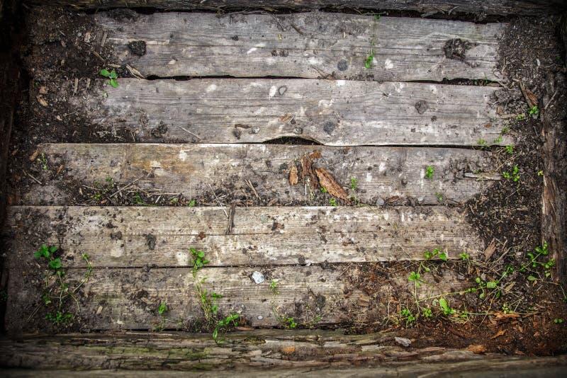 Деревянный треснутый материал журнала стоковая фотография