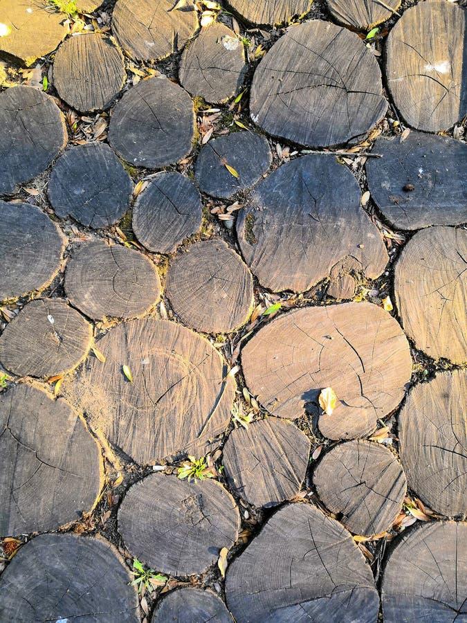 Деревянный фон Поперечная сечение макросов Закрытие круглой части дерева с ежегодными кольцами и трещинами стоковое фото