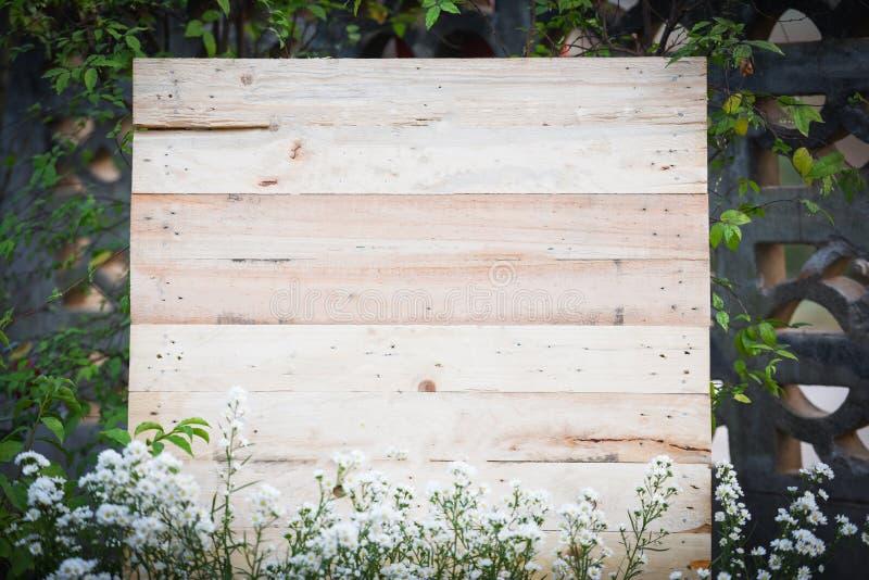 Деревянный фон с заводом белого цветка в саде/деревянной доске стоковая фотография