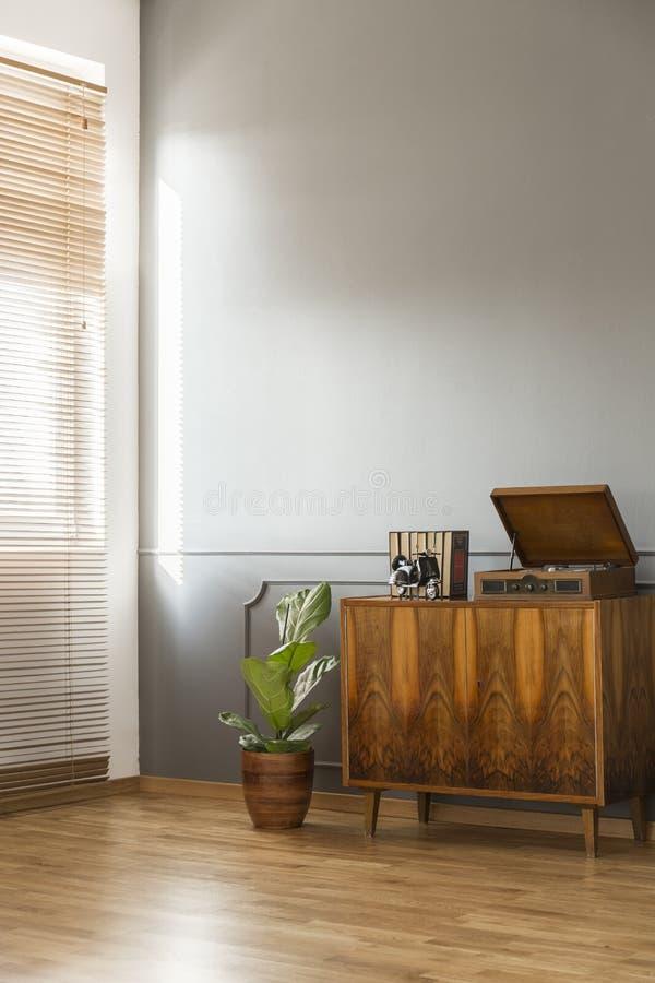 Деревянный шкаф рядом с заводом против серой стены в минимальное ретро стоковые фото