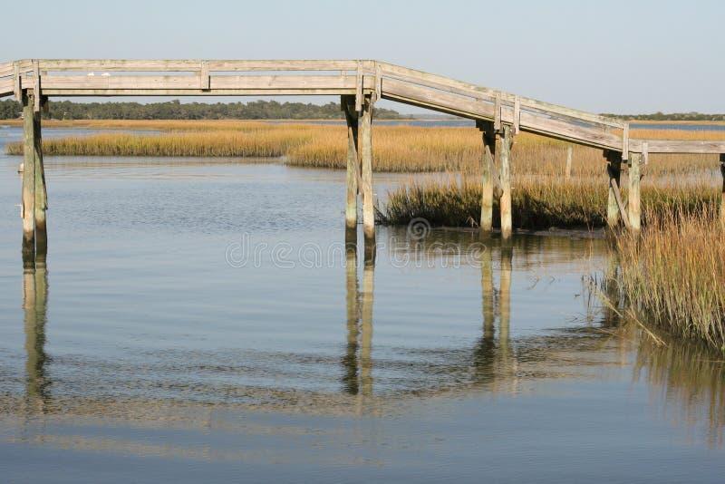 Деревянный footbridge над болотом Северной Каролины стоковое фото rf